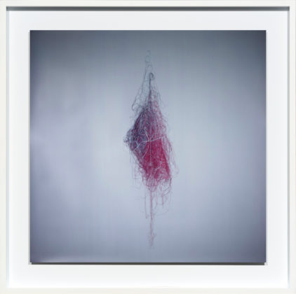 Colored Cotton 2, 2010, camera obscura Ilfochrome photograph