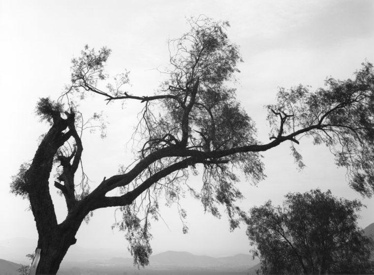 Looking Toward Los Angeles,  Northeast of Riverside, California, ca. 1983, gelatin-silver print