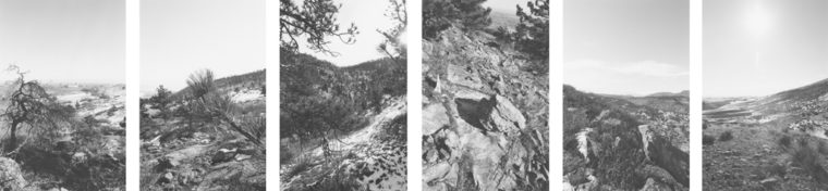 Untitled, 1994, six gelatin-silver prints
