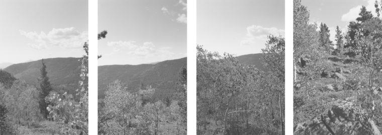 Untitled, 1994, four gelatin-silver prints