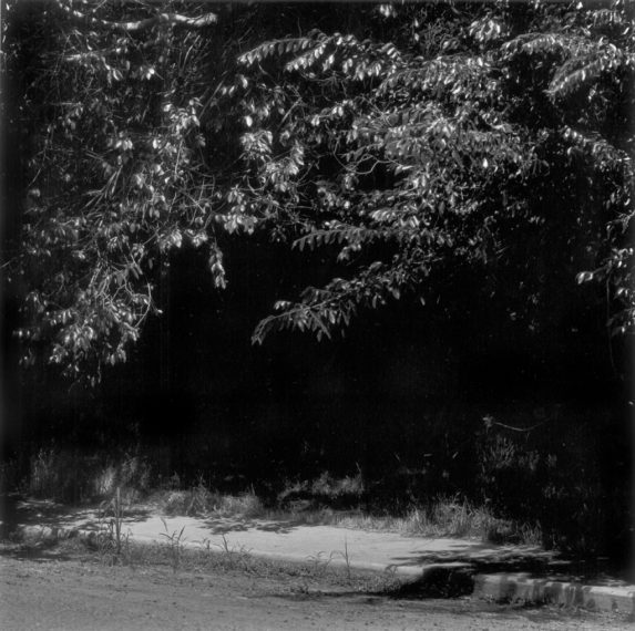 Untitled, ca. 1981, gelatin-silver print