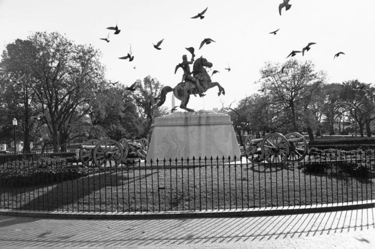 General Andrew Jackson, Lafayette Park, Washington, DC, 1973, gelatin-silver print