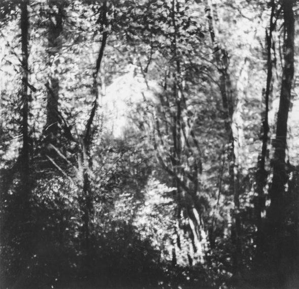Untitled, 1968-72, gelatin-silver print