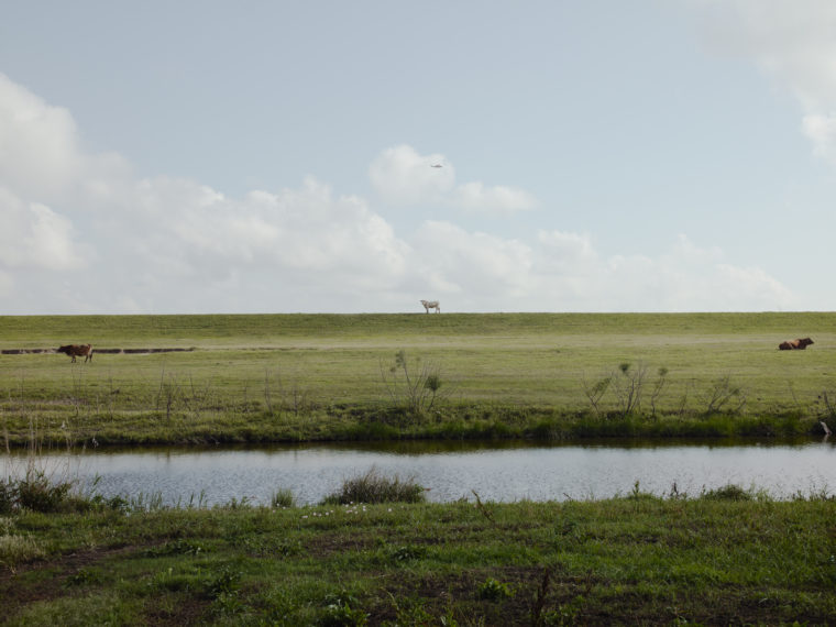 Helicopter Returning From Deep Water Horizon Spill, Venice, Louisiana, 2010, pigment print