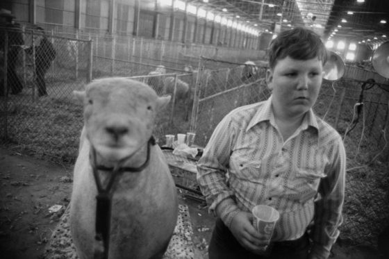 Fort Worth, Texas, 1975, gelatin-silver print