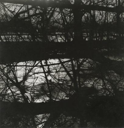 Untitled, 1964, gelatin-silver print