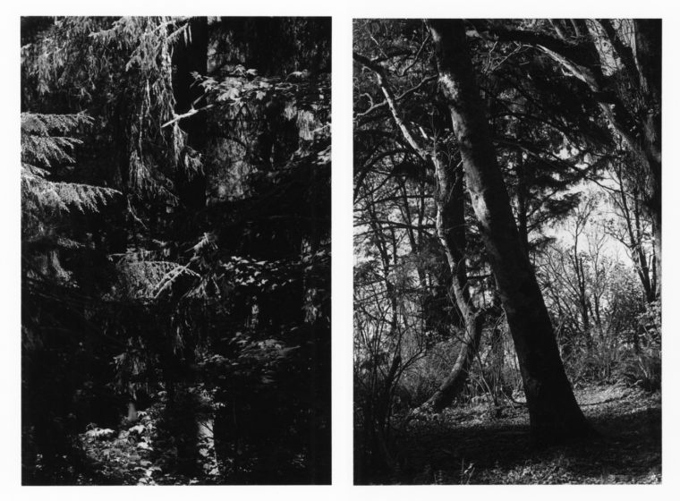 Untitled, 2011, two gelatin-silver prints