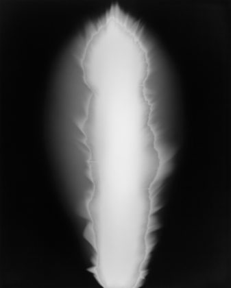 Hiroshi Sugimoto, In Praise of Shadows 980817, 1998