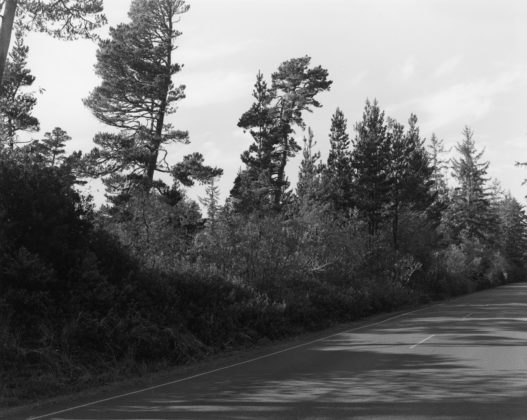 Robert Adams, Nehalem Spit, Oregon, 2013