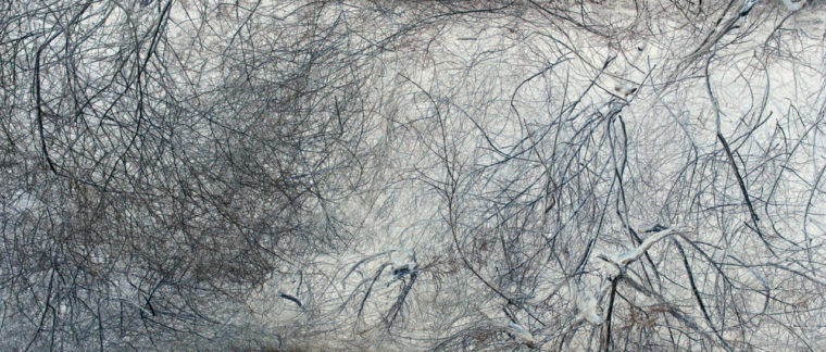 Untitled (8958#FC), 2011, pigment print