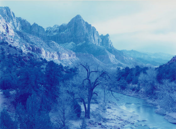 David Benjamin Sherry, Winter Storm, Zion Canyon, Utah, 2013, Traditional color darkroom photograph