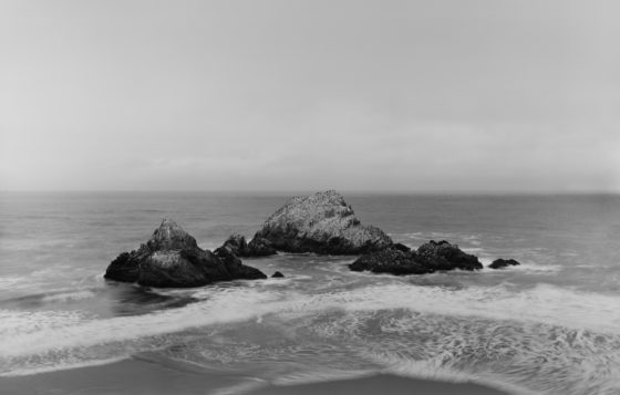 Richard Learoyd, Seal Rocks, 2015, gelatin-silver contact print