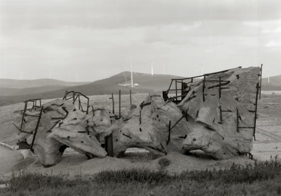 Richard Learoyd, Armature Mount Buzludzha, 2016, gelatin-silver contact print