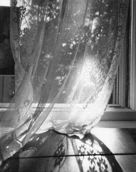 NICHOLAS NIXON, Bebe's Curtain, 2000, gelatin-silver contact print