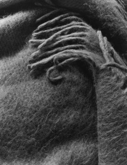 NICHOLAS NIXON, My Shawl, Brookline, 2016, gelatin-silver contact print