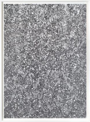 Untitled, 2017, unique gelatin-silver photogram